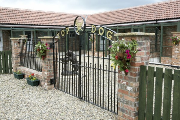 Top dog kennels luxury boarding kennels in york yorkshire for What is dog boarding